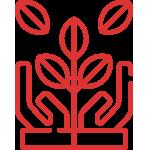 icono-home-sementeiras